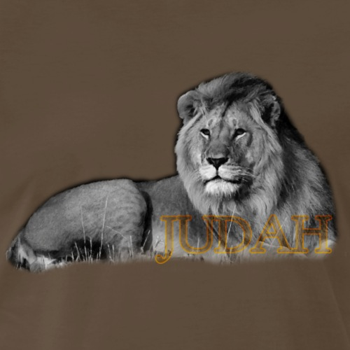 Lion Rules - Men's Premium T-Shirt