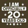 I Am Officially 20 Years Old 20th Birthday - Men's Premium T-Shirt