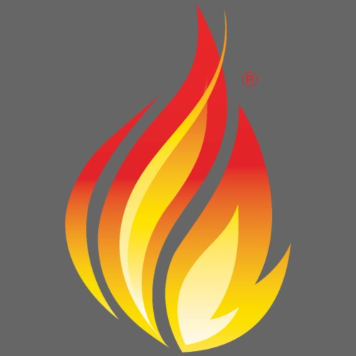 HL7 FHIR Flame Logo - Men's Premium T-Shirt
