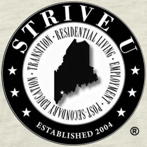 STRIVE U Emblem - Men's Premium T-Shirt