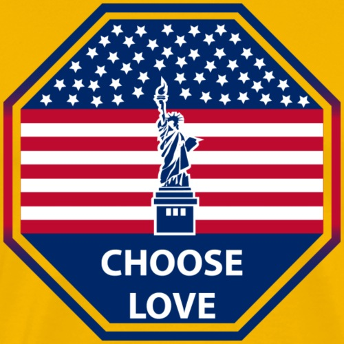 Stars and Stripes Choose Love t-shirt - Men's Premium T-Shirt