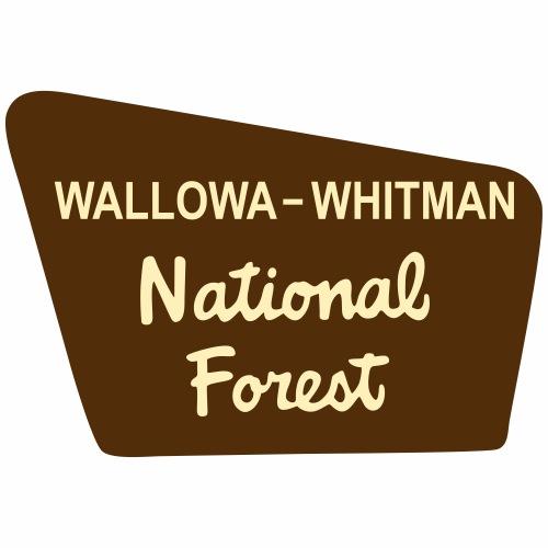 Wallowa-Whitman - Men's Premium T-Shirt