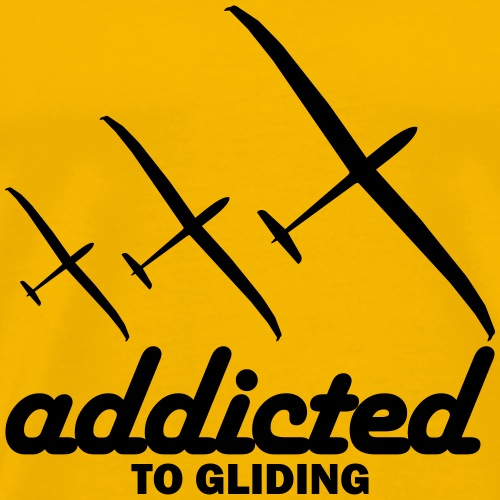 addicted to gliding gift present - Men's Premium T-Shirt
