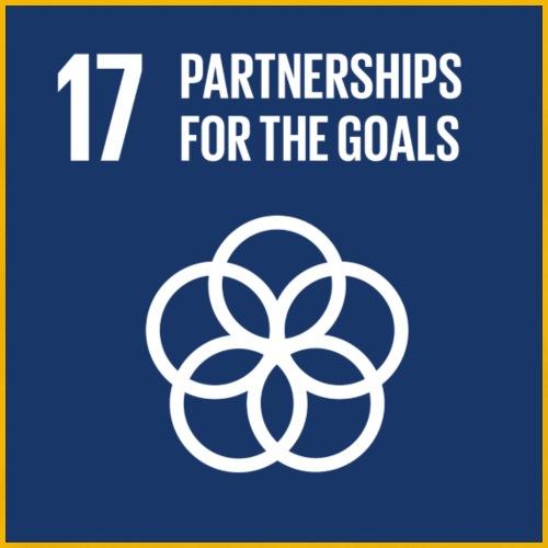 E SDG goals Goal 17 partnerships for the goals - Men's Premium T-Shirt