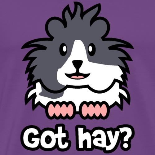 Guinea Pigs - Got Hay? - Men's Premium T-Shirt