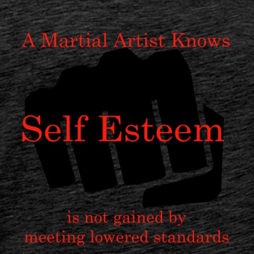 A Martial Artist Knows #1 - Fist - Men's Premium T-Shirt