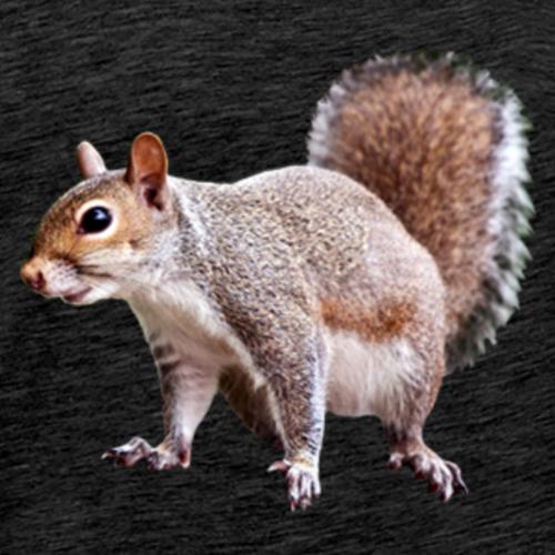 squirrel clipart 2 - Men's Premium T-Shirt