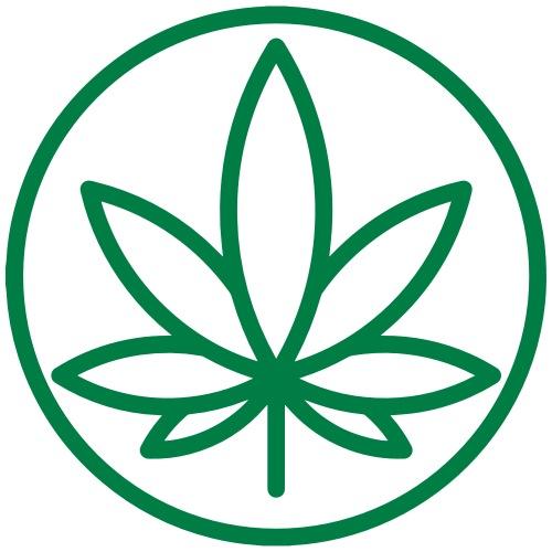 marijuana Leaf - Men's Premium T-Shirt
