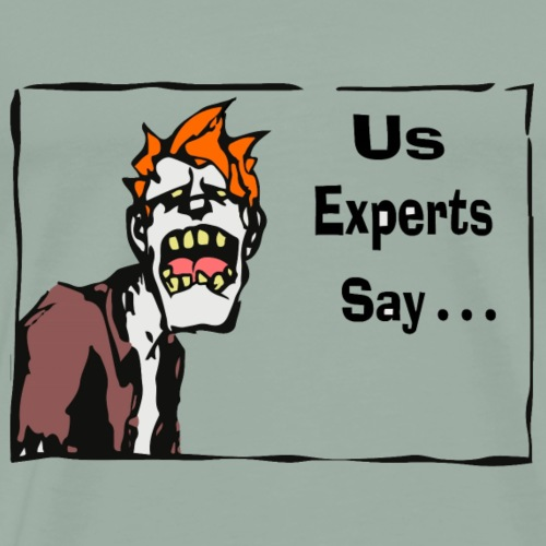 The Experts Say it to png - Men's Premium T-Shirt