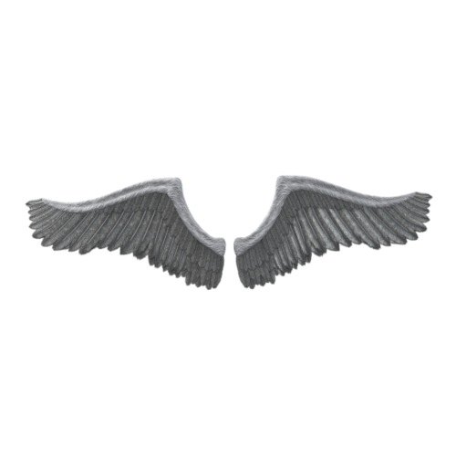 Wing - Men's Premium T-Shirt