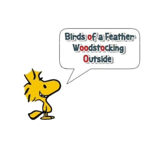 Phish: Birds of a Feather - Men's Premium T-Shirt