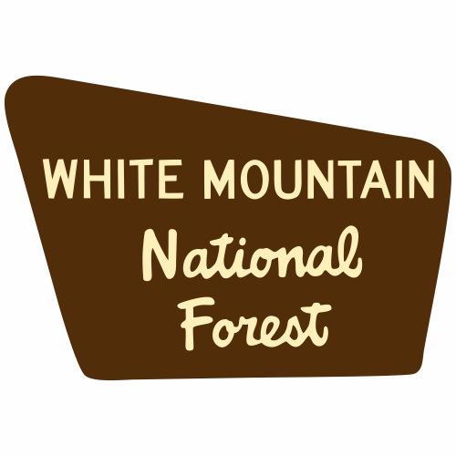 White Mtns - Men's Premium T-Shirt