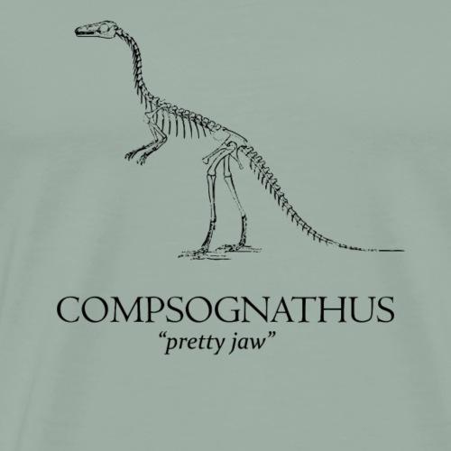 Compsognathus - Men's Premium T-Shirt
