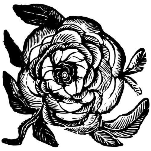 Rose - Men's Premium T-Shirt