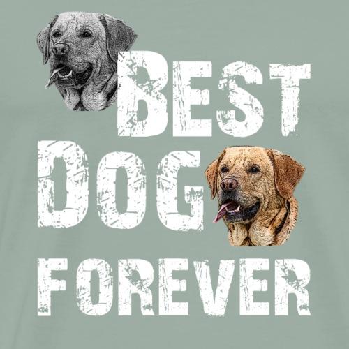 retriever,dogs,dog holder, dog lover, animals, - Men's Premium T-Shirt