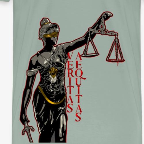 Truth and Justice - Men's Premium T-Shirt