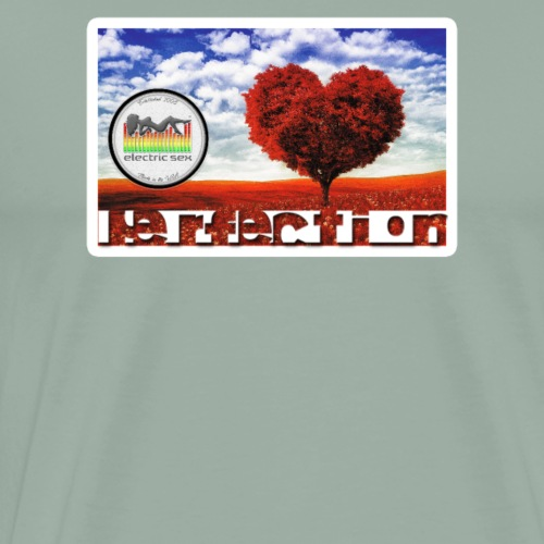 Perfection [Apparel] - Men's Premium T-Shirt