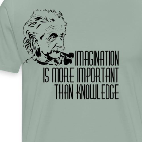 Imagination is more important than knowledge - Men's Premium T-Shirt