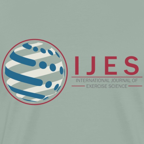 IJES side - Men's Premium T-Shirt