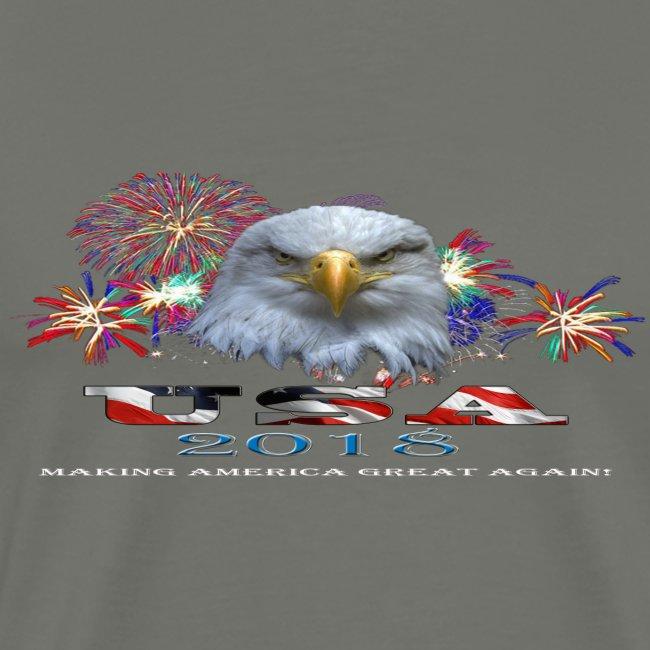 USA EAGLE 2018