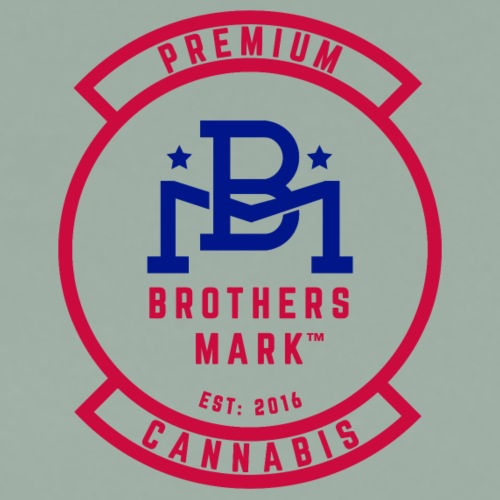 Red Brothers Mark (front) Veterans Cannabis Group - Men's Premium T-Shirt