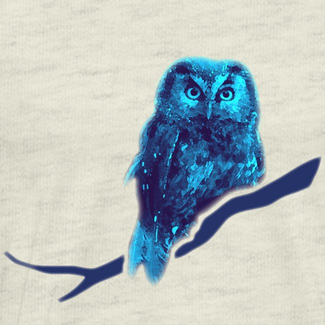 owl bird fowl blue