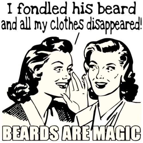 Beards Are Magic I Fondled His Beard & My Clothes - Men's Premium T-Shirt