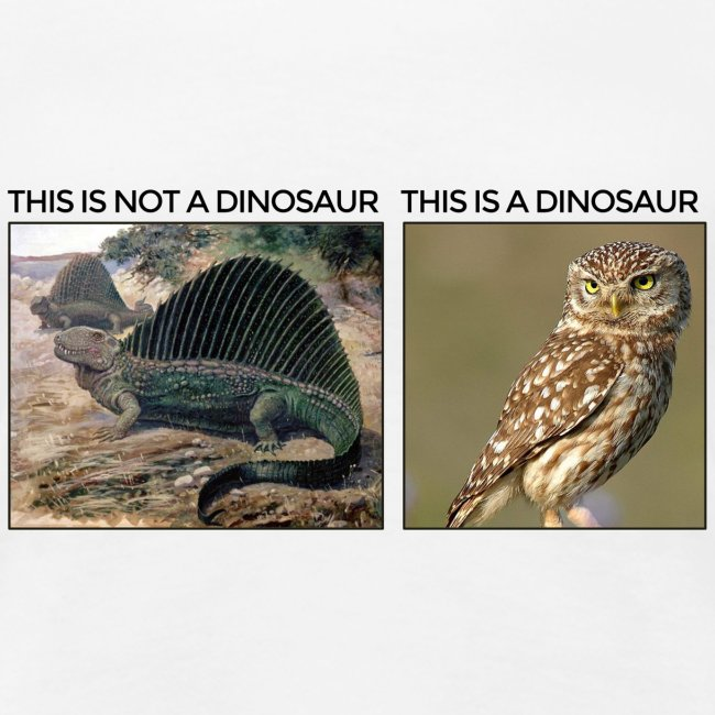 This is not a dinosaur (light background)