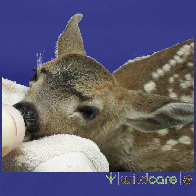 Orphaned Deer at WildCare
