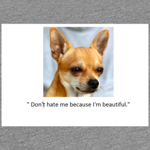 T-shirt with dog and funny caption - Women's Premium T-Shirt