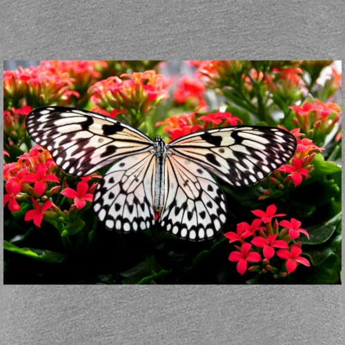 Beautiful butterfly with blooming blossoms - Women's Premium T-Shirt