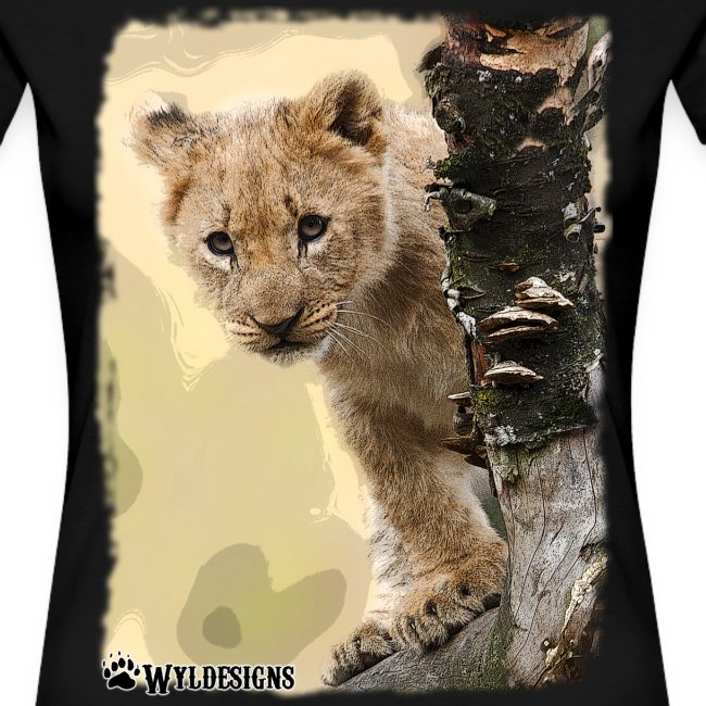 Lion Cub Peeking