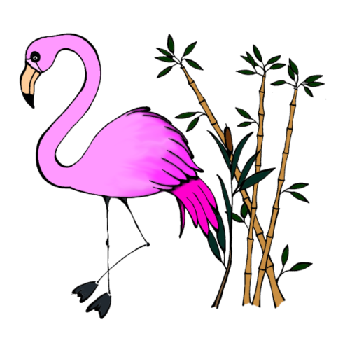 Flamingo - Women's Premium T-Shirt