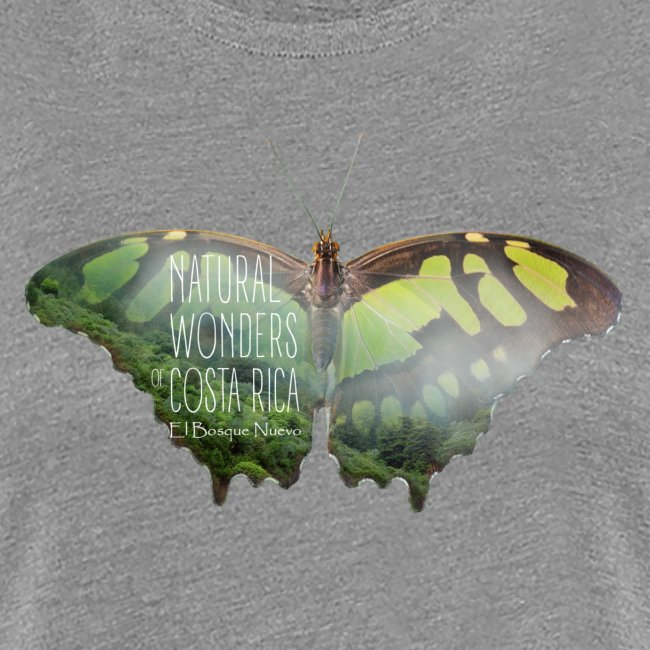 Butterfly_rainforest_1