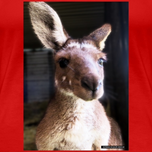 Kangaroo - Women's Premium T-Shirt