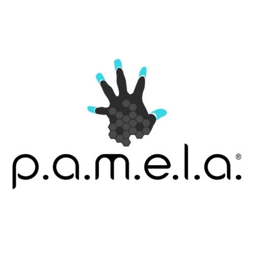 P.A.M.E.L.A. Logo Black - Women's Premium T-Shirt