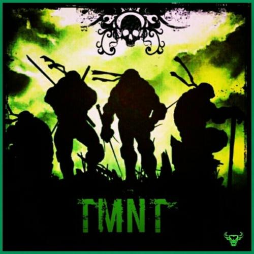 TMNT - Women's Premium T-Shirt