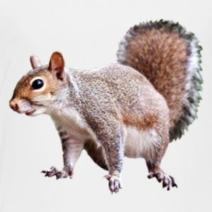 squirrel clipart 2 - Toddler Premium T-Shirt