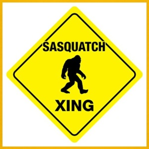 Sasquatch crossing - Toddler Premium T-Shirt