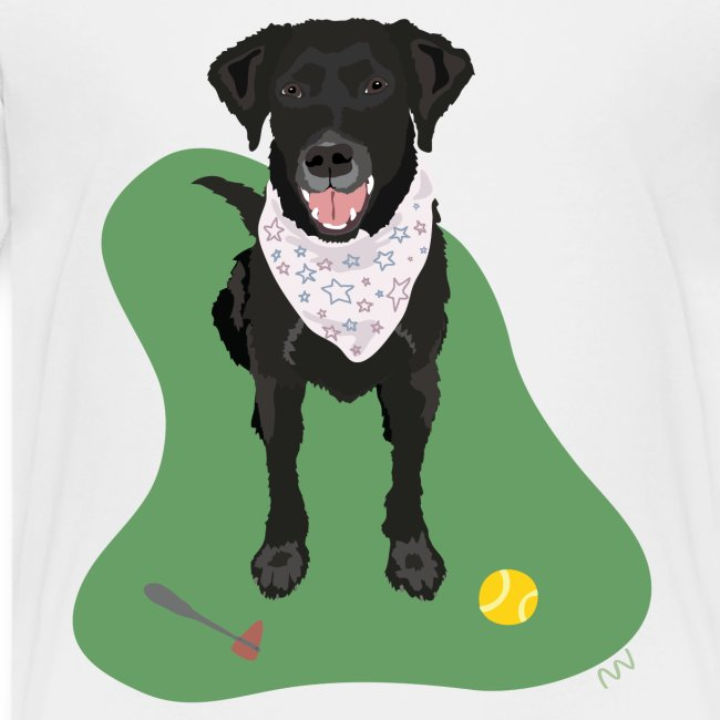 Black Lab with a Ball