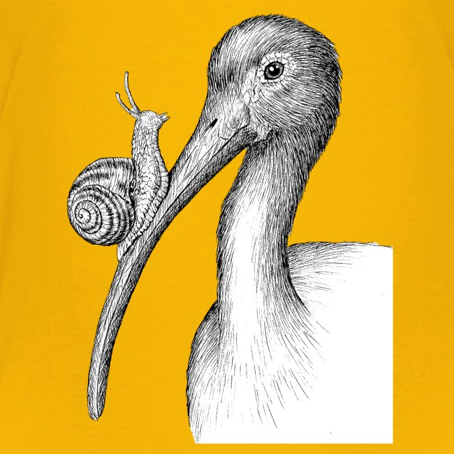 Ibis with Snail by Imoya Design