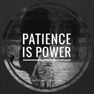 patience is power - Tote Bag