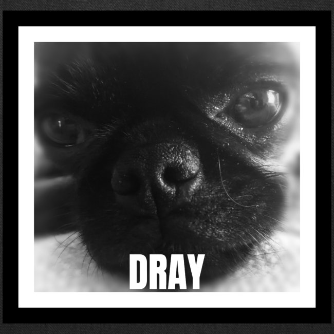 Drayconic Dog Frame Design