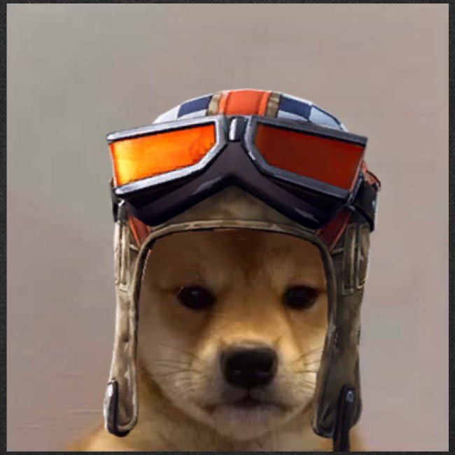Renegade Doggo