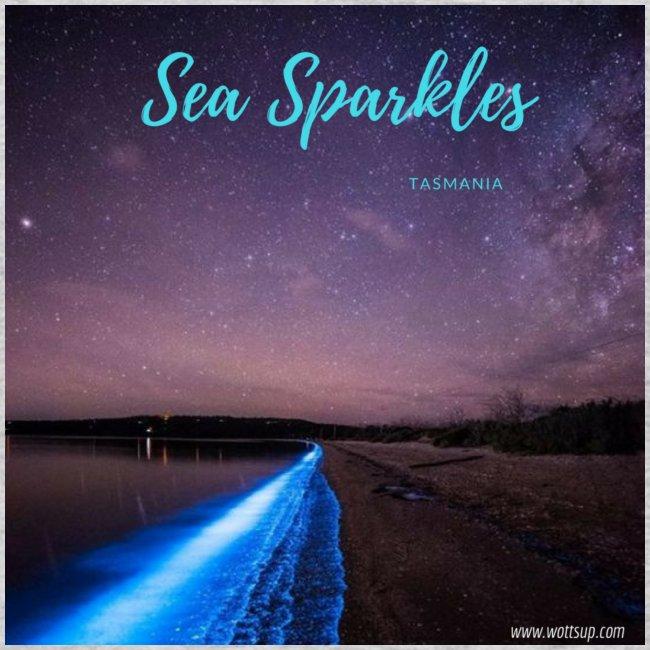 Tasmanian Sea Sparkles