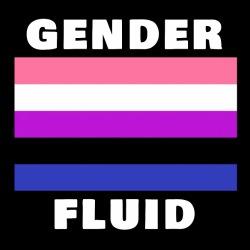 Gender Fluid flag
