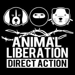 Animal liberation direct action