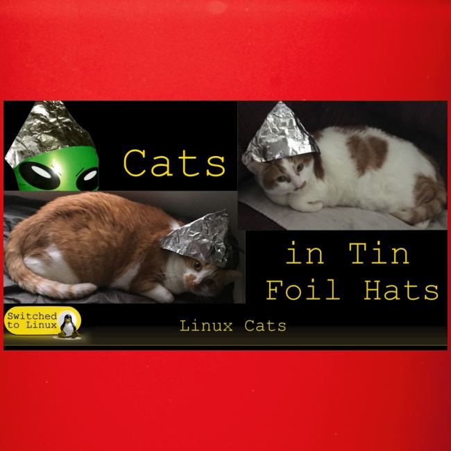 Cats in Tin Foil Hats