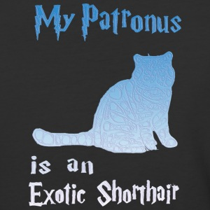 Exotic Shorthair - Baseball T-Shirt