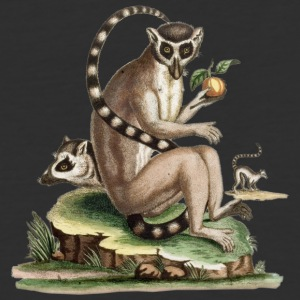 Lemur Artwork - Baseball T-Shirt